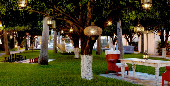 The Orchard at The Delano Hotel in Miami's SoBe